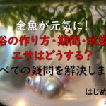 金魚が元気に!塩浴の作り方・期間・水換え・エサはどうする?すべての疑問を解決します